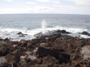 Blow hole, view from the Fisherman's Trail